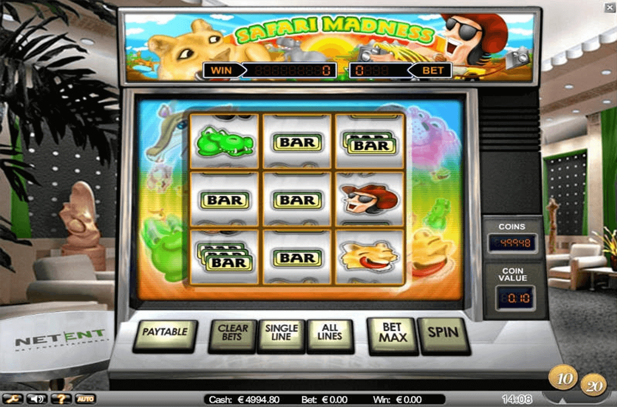 Safari Madness Slot Review & Guide for Players Online